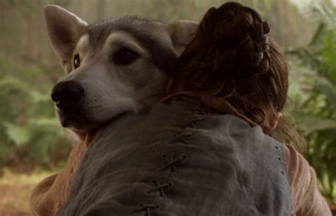 Arya Stark Might Reunite With Long-Lost Pal in 'Game of