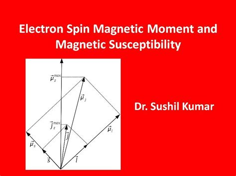 Electron Spin Magnetic Moment and Magnetic Susceptibility