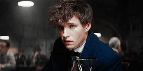 Newt scamander gif 11 » GIF Images Download