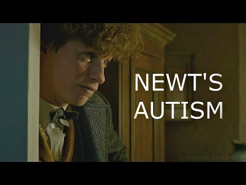 Attention and Affection [Newt Scamander x Reader] by