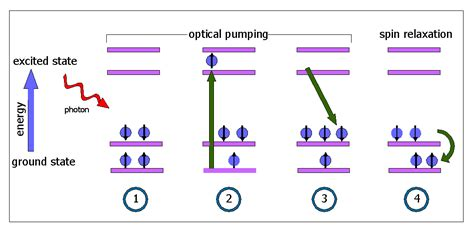 Measurement of Spin Relaxation by Optical Holeburning